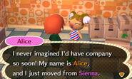 Meeting Alice