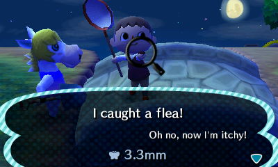 File:Catching Fleas From Colton.JPG