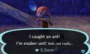 Ant Caught