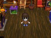 Animal Crossing 004