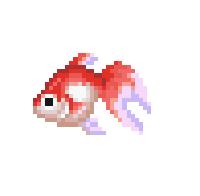 File:Goldfish (Wild World).png