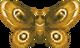 Moth (City Folk texture)