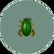 Diving Beetle (City Folk)