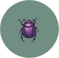 Dung Beetle (City Folk)