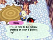 DaisyAF