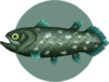 Coelacanth (City Folk)