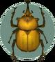 Elephant Beetle (City Folk)