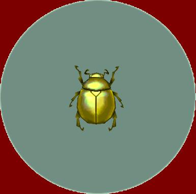 File:Scarab Beetle (City Folk).png