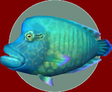 File:Napoleon Fish (City Folk).png