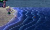 Coelacanth | Animal Crossing Wiki | FANDOM powered by Wikia Oarfish Animal Crossing