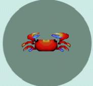 Crab, AFe