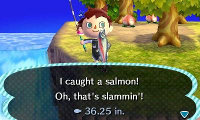 File:Salmon New Leaf peach .jpg