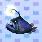 Football fish encyclopedia (New Leaf)