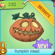 Shiveer-Shoppe Pumpkin-Head 2013