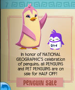 Penguin Sale Jamaa Journal