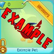 Shop Example-Pet