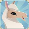 Llama Avatar 1