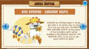 Jamaa Journal Sunshine Outfit