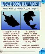 New ocean animals