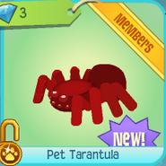 Diamond-Shop Pet-Tarantula