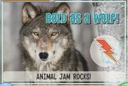 Wolfjag2