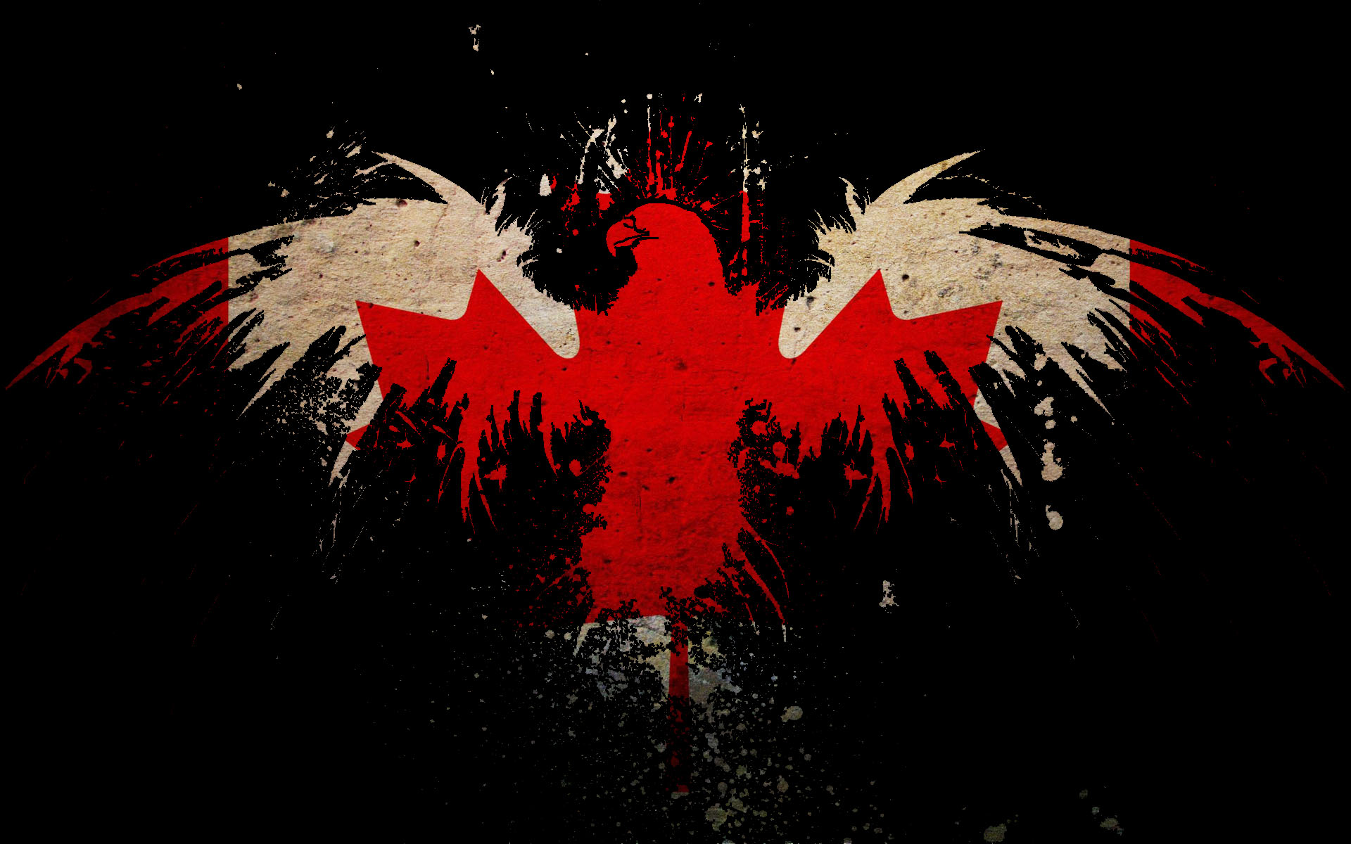 image leaf eagles canada flags canadian flag eagle maple desktop