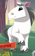 Updated horse artwork