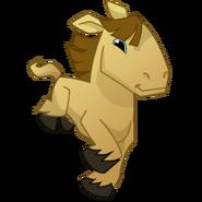 Aj horse brown