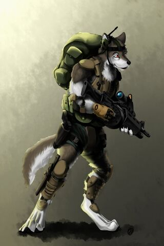 File:Wolf soldier.jpg