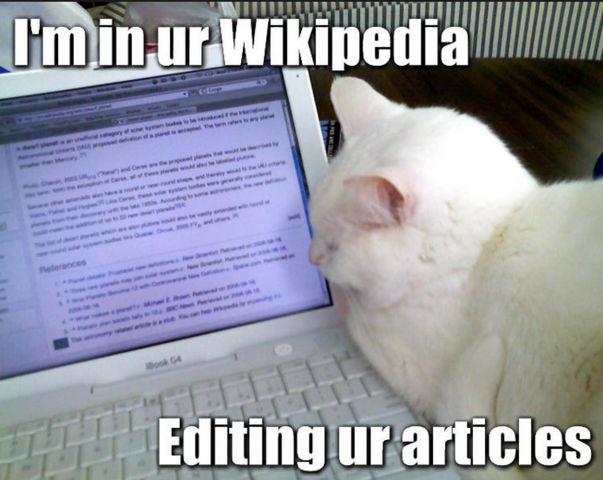 File:Wiki lolcat.png