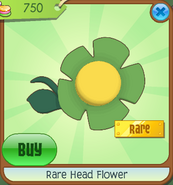 Shop Rare-Head-Flower