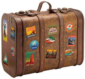 Image - Travel-suitcase (1).png | Animal Jam Wiki | Fandom powered ...