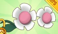 Flower Glasses Pink