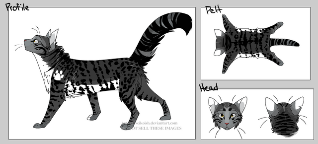 File:ShadowPaw.png