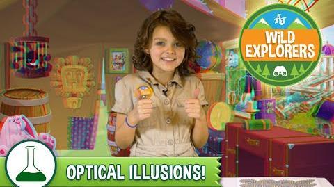Wild Explorers - Optical Illusions