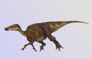 Claosaurus