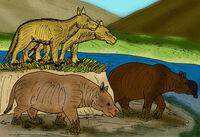 Restoration Merycochoerus,Promerycochoerus,Brachycrus