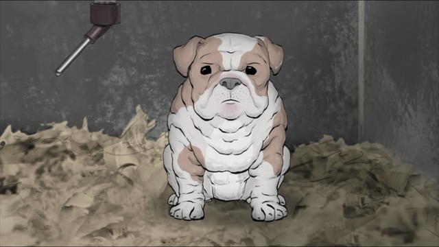 File:BulldogPuppy.png