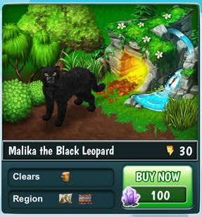 MalikaBlackLeopard