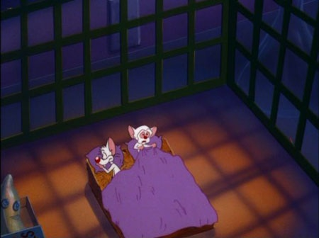 File:PinkinBrainAnd the bed where you lie, is made up on your side... .jpg