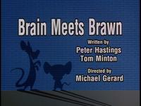 54-1-BrainMeetsBrawn