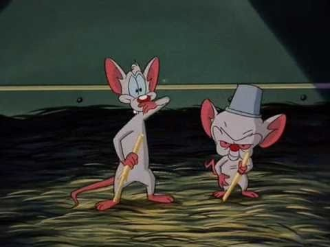 """File:Brain and his friend Pinky sing a song about """"Don Cerebro the Mouse"""".jpg"""