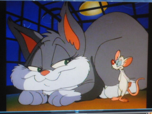 File:Pinky and Rita smiling.JPG