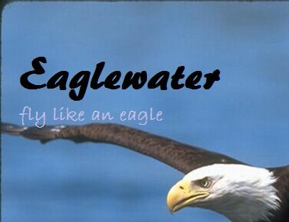 File:Eaglewater emote.jpg