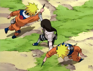 Neji Fighting Naruto