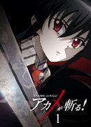 Akame ga Kill BD01