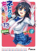 Netoge no Yome Light Novel Vol 13