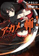 Akame ga Kill Vol 13