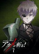 Akame ga Kill BD07