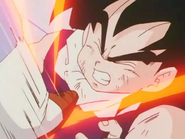 Salt steps on gohan stomach